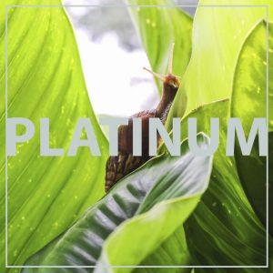 trattamenti_bava_lumaca_platino3